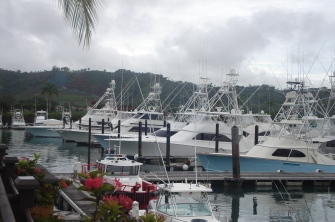 pretty boats and mountains surrounding Los Suenos